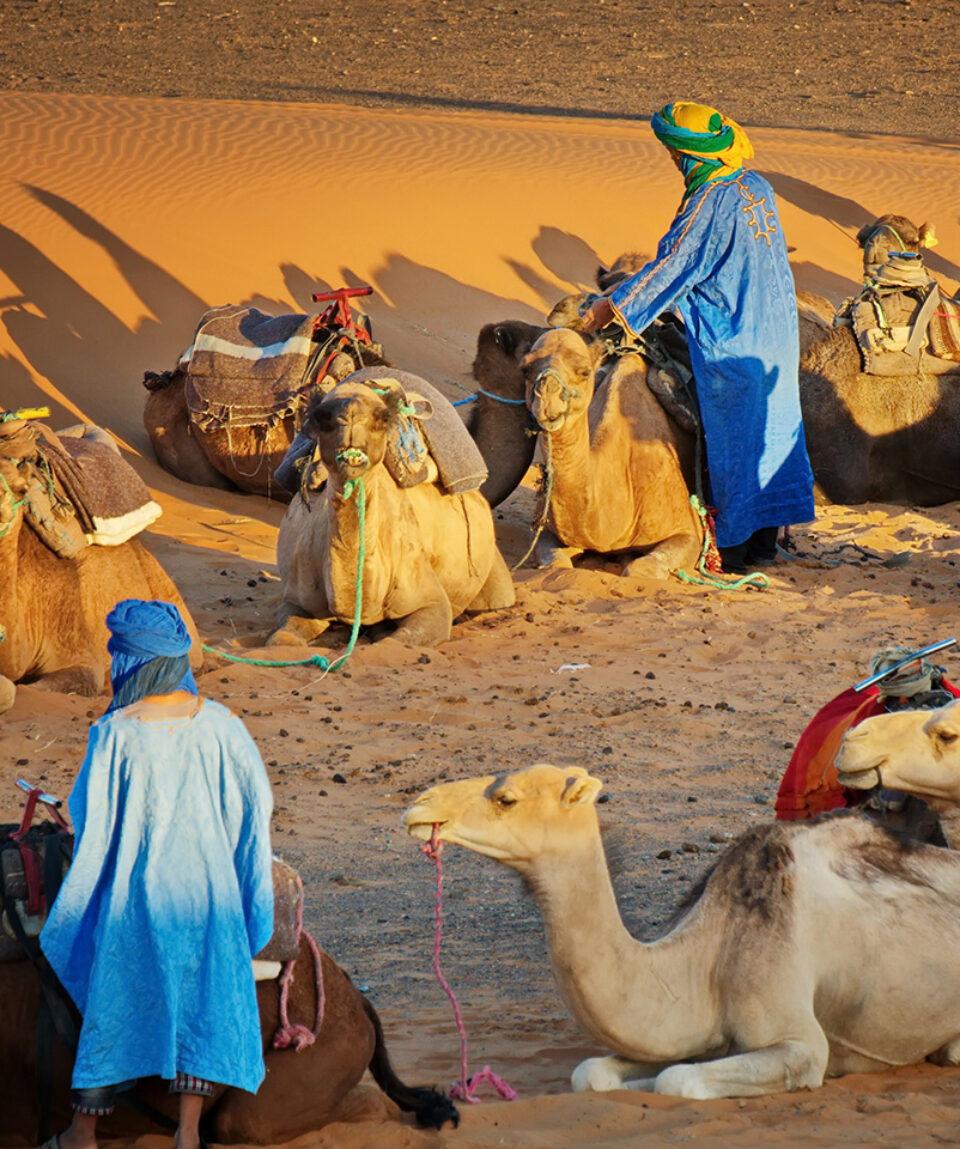 Erg-Chebbi-Kamele-Kameltreiber