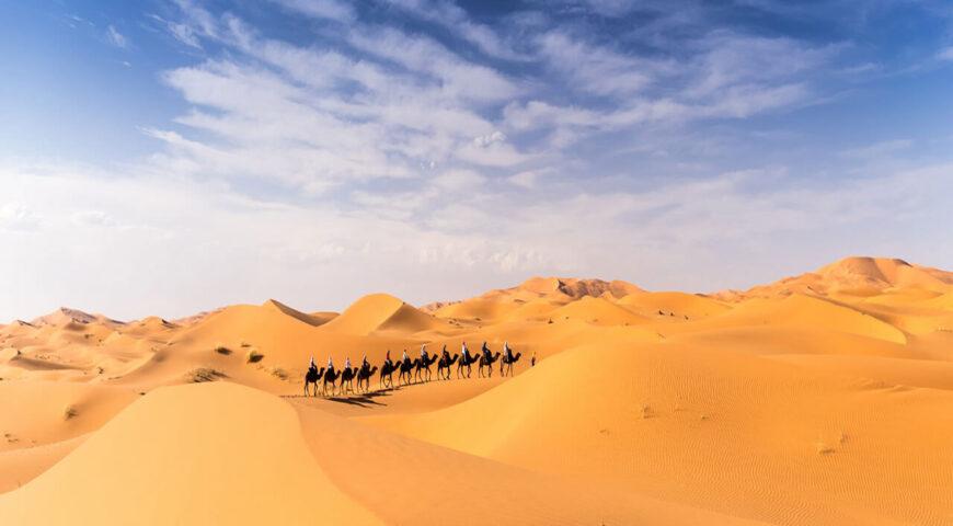 Reisegaeste im Erg Chebbi 2019