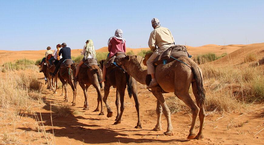 auf dem Kamelrücken durch die Dünen des Erg Chebbi