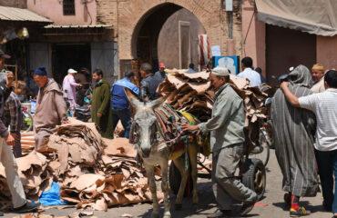 auf dem Souk in Marrakech